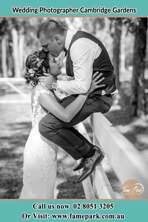 Photo of the Groom sitting on the fence while kissing the Bride on the forehead Cambridge Gardens NSW 2747
