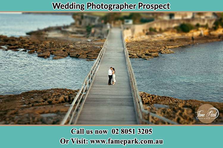 Photo of the Groom and the Bride at the bridge Prospect NSW 2148