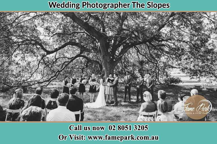 Wedding ceremony under the big tree photo The Slopes NSW 2754